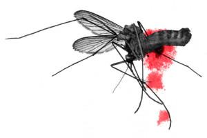 уничтожение комаров и мух 03